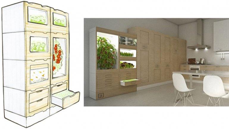 Las verduras del futuro crecen en muebles y no necesitan luz
